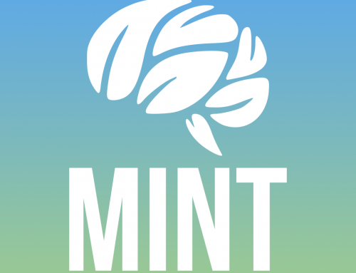 MINT: Mental Health In Non-Formal Education And Training